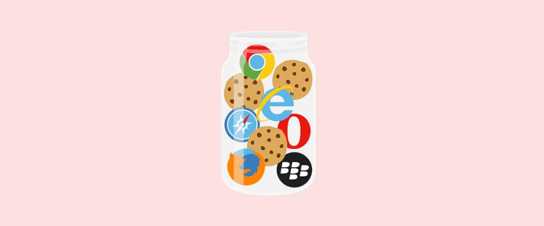 Wat zijn cookies BEEGO